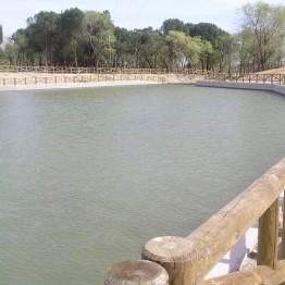 Bombeo Parque de las Presillas Alcorcón 5 262x262 - Riegos programados