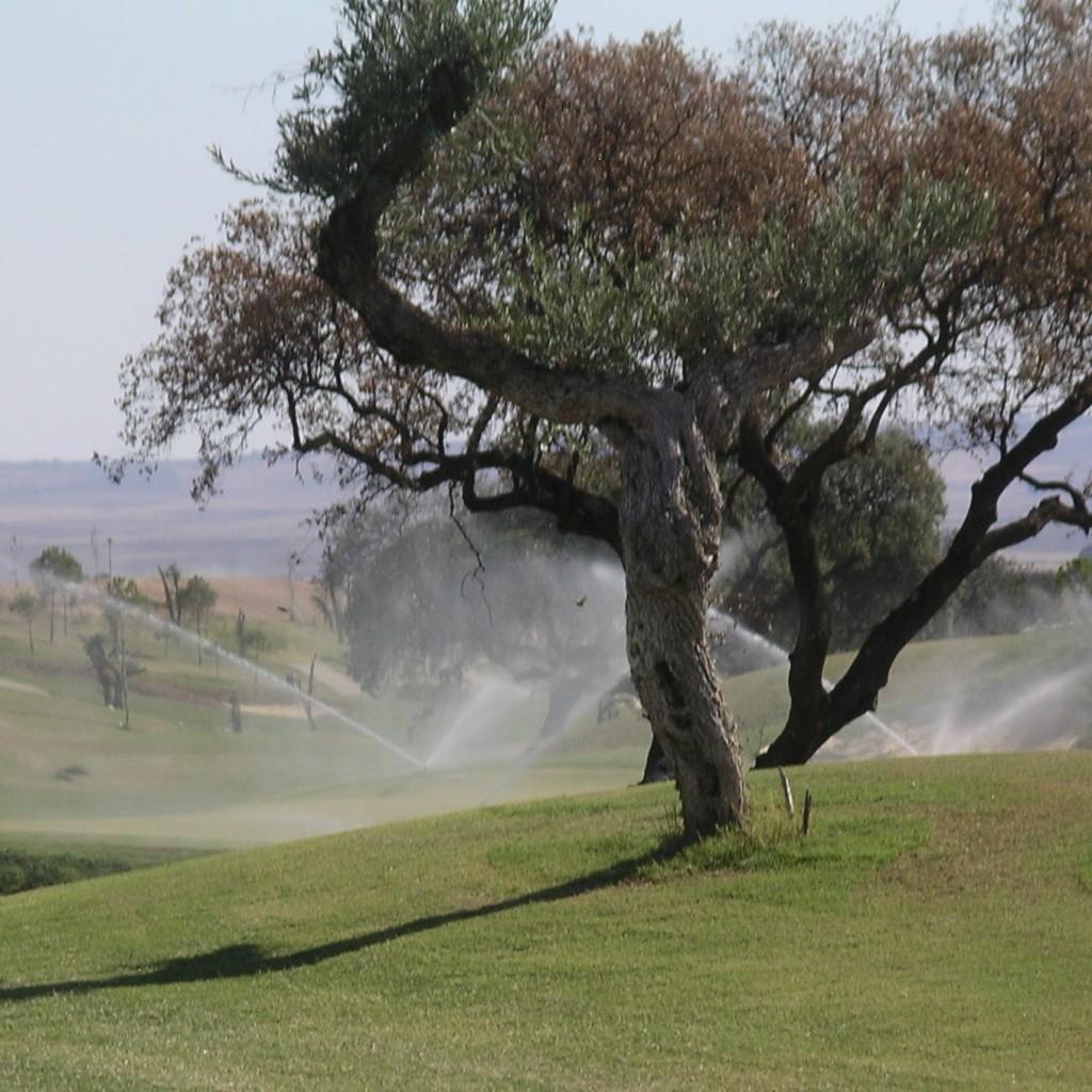 riegos aspersores campos golf